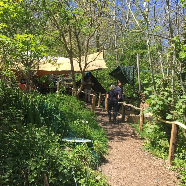Supporting Moulsecoomb Forest Garden Project